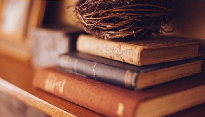 Top 4 Cuốn Sách Vừa Dễ Đọc, Vừa Giúp Bạn Mở Rộng Kiến Thức Cho Chính Mình