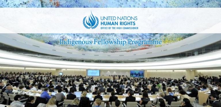 [Thuỵ Sĩ] Chương Trình Học Bổng Ngắn Hạn UN-OHCHR Indigenous Fellowship Programme 2018 (Tài Trợ Toàn Phần Từ Liên Hợp Quốc)