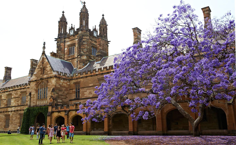 """University of Sydney - Trường đại học Úc """"chuyên đào tạo thủ tướng"""""""