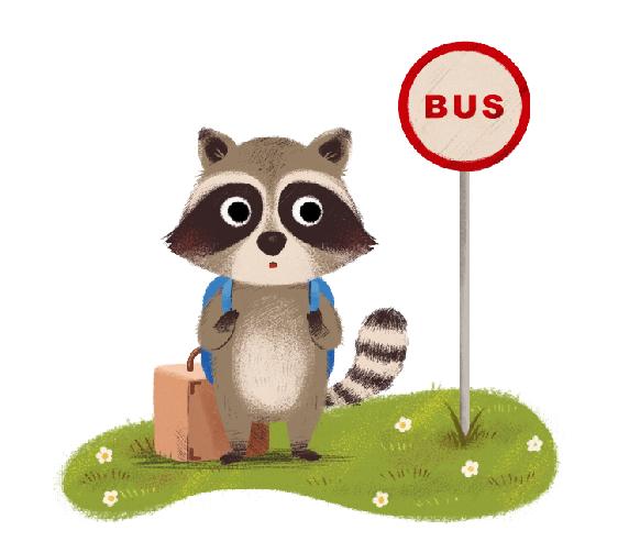Kết quả hình ảnh cho raccoon illustration