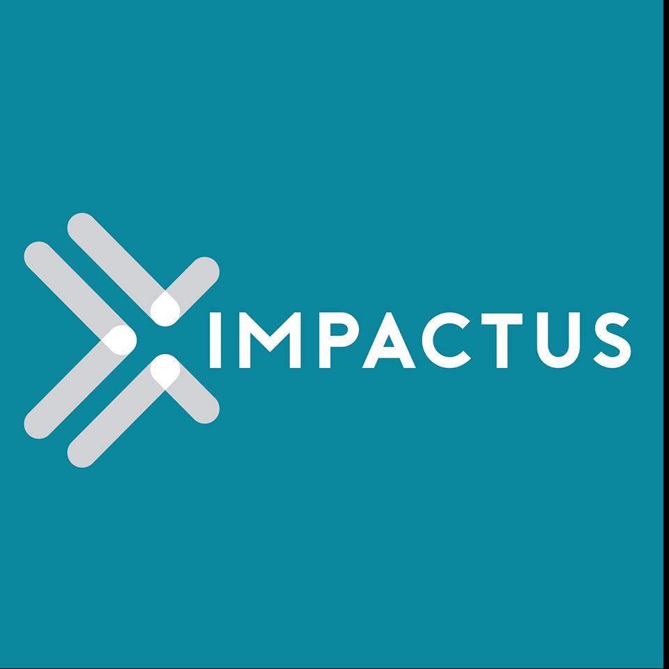 Impactus Career Mentoring Hub