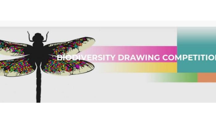 [Online] Cuộc Thi Vẽ Cuộc thi vẽ đa dạng sinh học 2019 Với Giải Thưởng 500 EUR